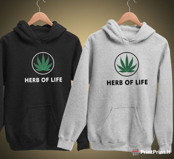 Herb of life 3